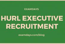 hurl executive recruitment
