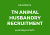 tn animal husbandry recruitment