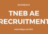 tneb ae recruitment
