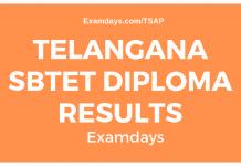 ts sbtet diploma results