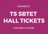 ts sbtet hall ticket