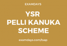 ysr pelli kanuka apply