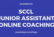 sccl junior assistant coaching